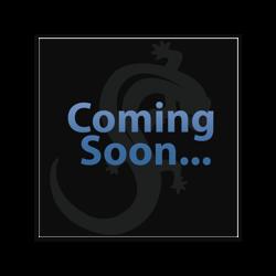 18 KARAT GOLD WHITE PRONG SET BLACK DIAMOND FOR INTERNALLY THREADED MICRO PINS